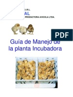 Incubación Temuco