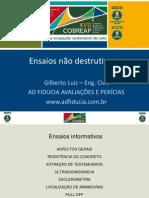 Ensaios Não Destrutivos -Gilberto Luiz - l