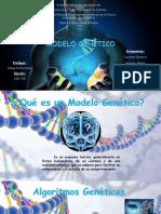 Modelo Genético (1)