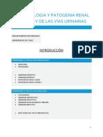 Fisiopatología y Patogenia General Del Rión y de Las Vías Urinarias