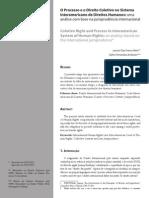 O Processo e o Direito Coletivo No Sistema Interamericano de Direitos Humanos - Uma Análise Com Base Na Jurisprudência Internacional
