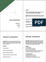 Suport Audit 2014