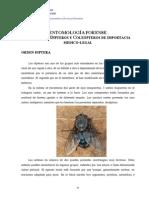 CUADERNILLO P4