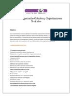 Seminario Negociación Colectiva y Organizaciones Sindicales