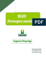 5_Mildiu_(Peronospora_manshuica)_226