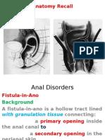Anal Fistula2