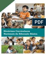 Diretrizes Curiculares Nacionais 2013-3