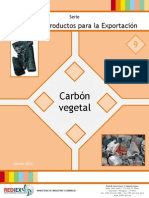 9 - PPE Carbon Vegetal