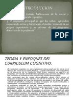 Enfoques Del Curriculum Cognitivo