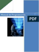 Manual Programacion (p)