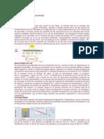 Procesos de La Fotosíntesis