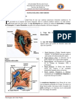 Grupo 3. Patologia Oido Medio