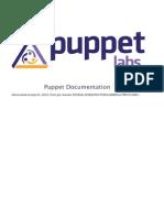 Puppet Manual