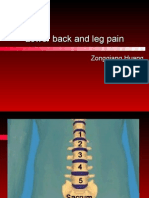 Degenerative disorders of lumbar spine
