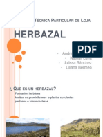 Herbazal
