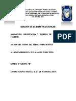 Ensayo-diario de Campo