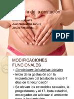 cambios fisiologicos embarazo