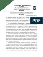 2.- La Organización Del Currículum Por Proyectos