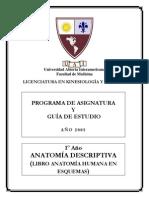 M203 Anatomía