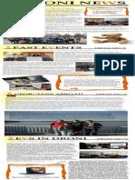 DRONI Newsletter February 2013