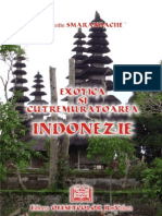 Indonezia (corectat 1dec2009)
