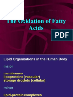 chapter 17 catabolism of fatty acids