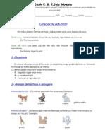 15899981 Ficha Informativa Classificacao Animais 5º Ano