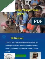 PEM-2007