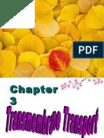 07-3-2membrane transport