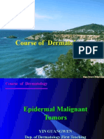 2008-Malignant Epidermal Tumors