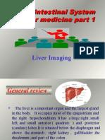 liver 1
