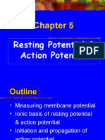 3Resting Potential & Action Potential