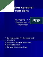 nervous system 7