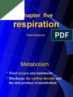 respiration one 2