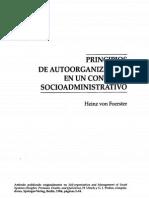 Heinz Von Forester - Principios de Autoorganización en Un Contexto Socioadministrativo