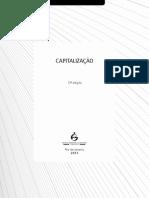 Capitalizacao 2013