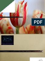 BKP - Eleição Incondicional