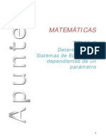 Tema 3 Determinantes ( Rango, Sistemas, Matriz Inversa) Ccssii