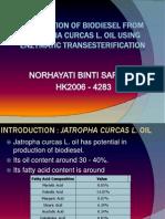Jatropha Biodiesel