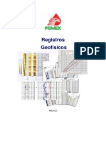 Registros Geofisicos PEMEX