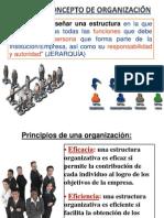 Diseño de Estructuras y Modelo Organizacional