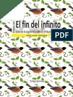 Elfin Del Infinito