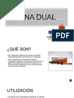 RESINA DUAL y Ionomeros