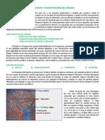 FISIOLOGÍA_Y_FISIOPATOLOGÍA_DEL_HÍGADO.pdf