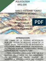 Arqueologia Llanos de Moxos