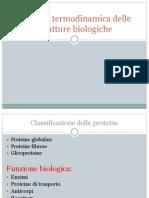 Transizioni Ordine-disordine Nei Biopolimeri