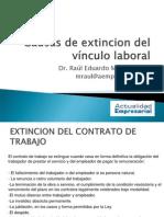 Causas de Extincion Del Vinculo Laboral