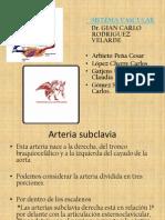 Arteria Subclavia Power Point