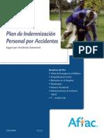 Plan de Indemnización Personal Por Accidentes (Nivel 2)