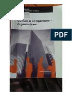 10. Cultura Si Comportament Organizational (Stefan Stanciu)